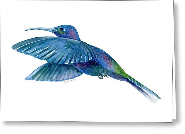 Sabrewing Hummingbird Greeting Card by Amy Kirkpatrick