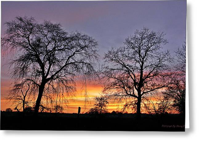 Sacramento Sunset Greeting Card