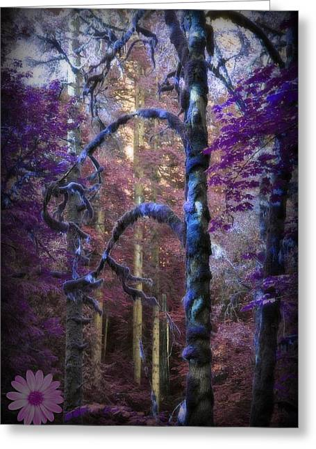 Sacred Forest Greeting Card