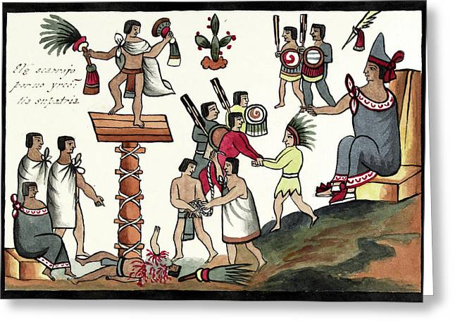 Sacrifice Of An Aztec Noble Greeting Card by Library Of Congress