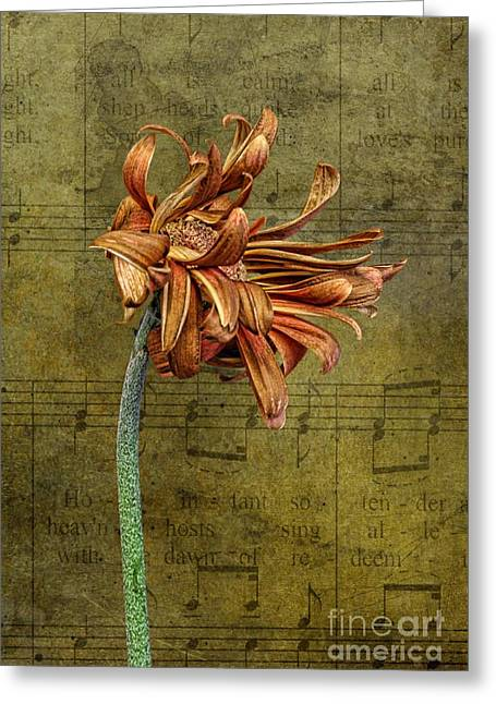 Greeting Card featuring the digital art Sad Song by Shirley Mangini