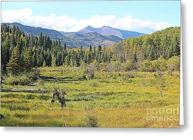 Saddle Mountain Greeting Card