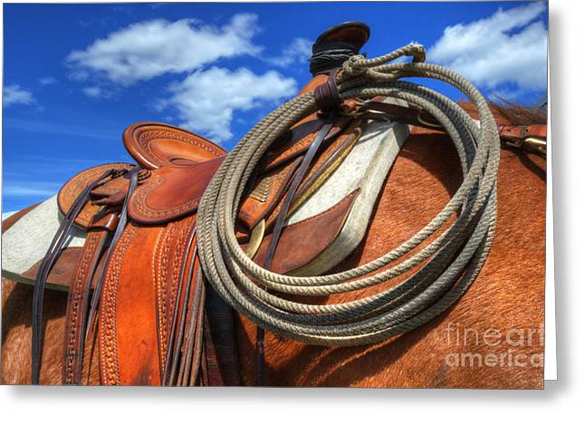 Saddle Up Greeting Card by Bob Christopher