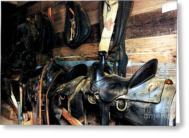 Saddles 103 Greeting Card by Vinnie Oakes