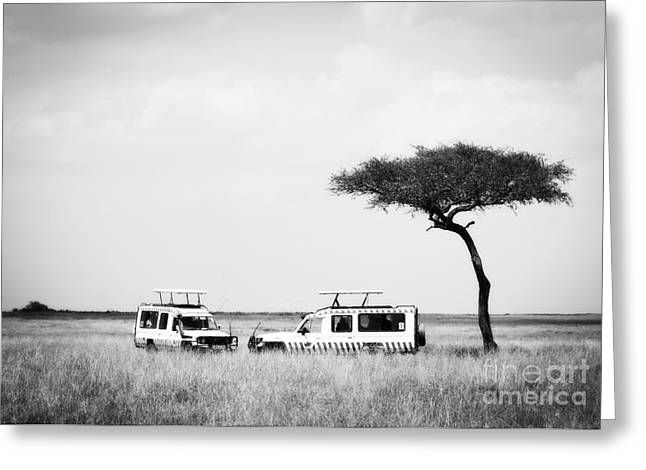 Safari Dream Greeting Card