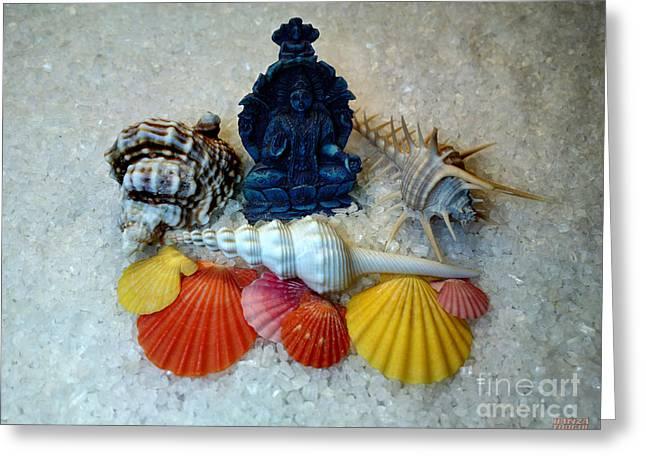 Safeguard Symbol Seashells Greeting Card by Hanza Turgul