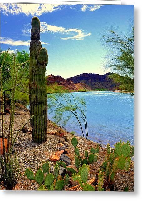 Saguaro Greeting Card by Antonia Citrino
