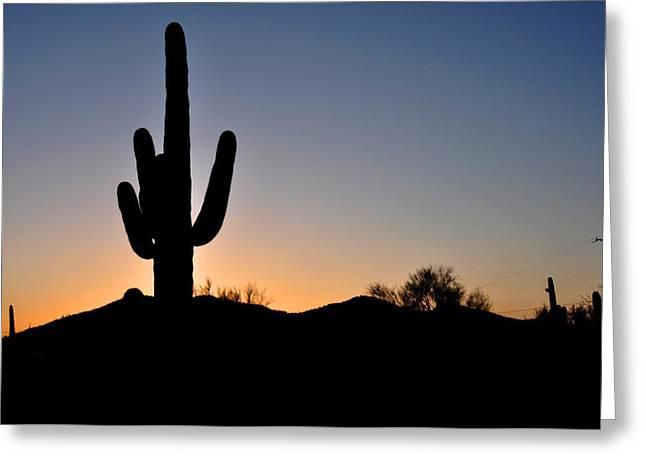 Saguaro Sunset Greeting Card by Diane Lent