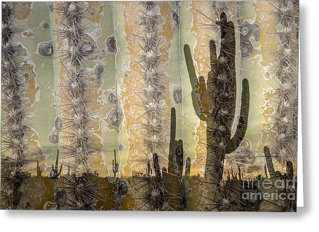 Saguaro Texture Greeting Card