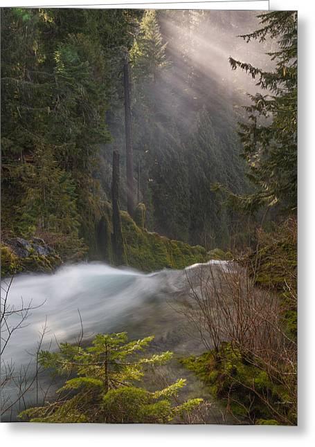 Sahalie Falls Mist Greeting Card by Leland D Howard