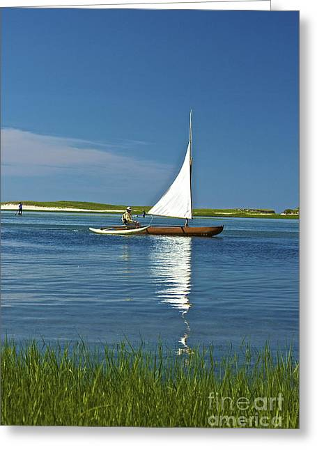 Sail Greeting Card by Amazing Jules