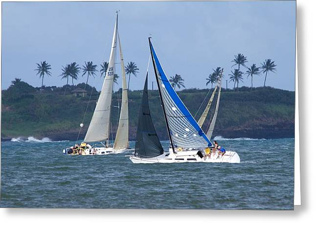 Sail Boat Race Greeting Card by Bonita Hensley