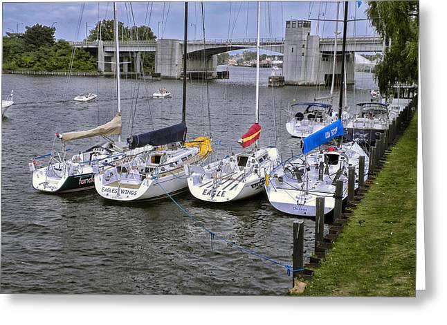 Sail Boats 4 In A Row Greeting Card by Thomas Woolworth