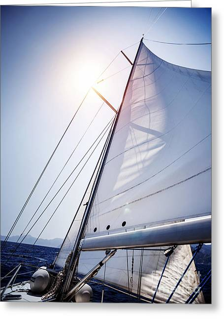 Sail Of The Yacht  Greeting Card by Anna Om