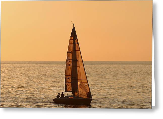 Sailboat In Hawaii Greeting Card by Kim Hojnacki