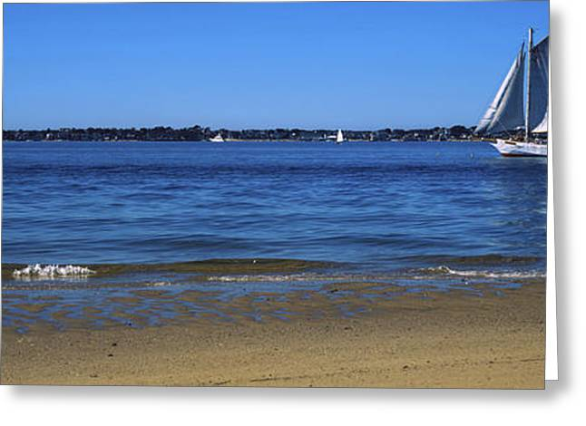 Sailboat In Ocean, Provincetown, Cape Greeting Card by Panoramic Images