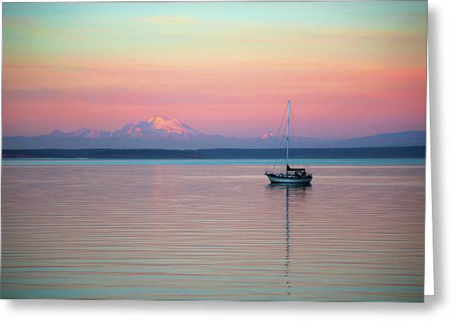 Sailboat In The Sunset. Greeting Card