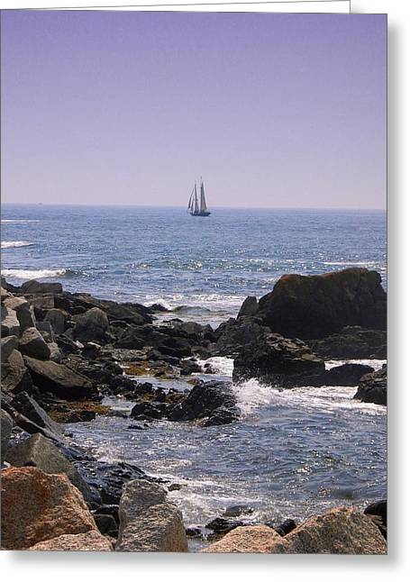 Sailboat - Maine Greeting Card