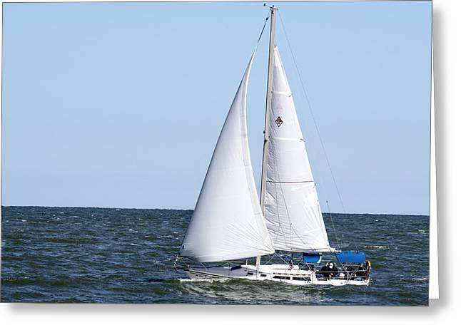 Sailboat On Lake Erie  Greeting Card