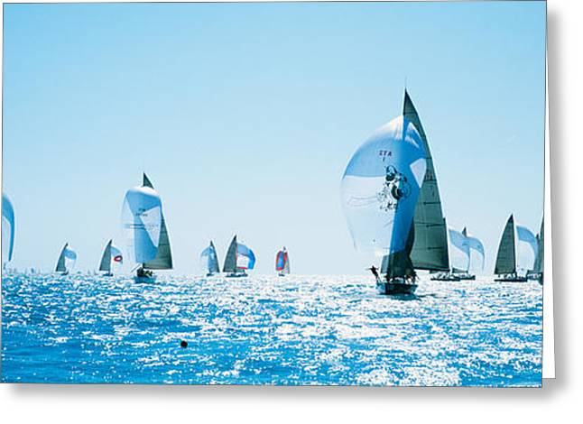 Sailboat Race, Key West Florida, Usa Greeting Card by Panoramic Images
