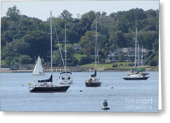 Sailboat Serenity Greeting Card by Debbie Nester