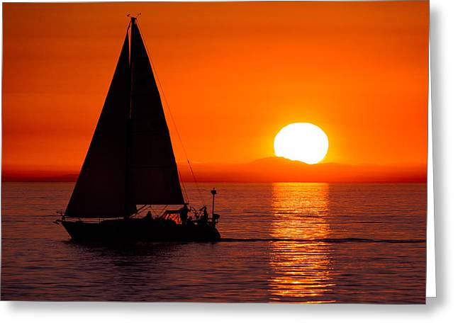 Sailboat Sunset Greeting Card by Alexis Birkill