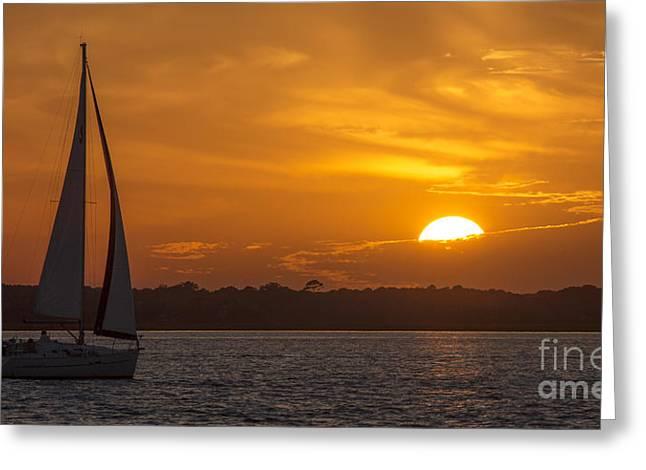 Sailboat Sunset  Greeting Card by Dustin K Ryan