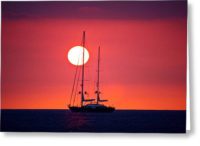 Sailboat Sunset Greeting Card by Venetia Featherstone-Witty