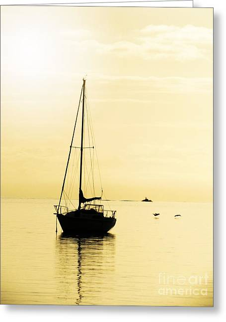 Sailboat With Sunglow Greeting Card by Barbara Henry