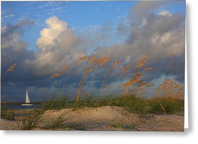 Sailboat Wrightsville Beach North Carolina  Greeting Card by Mountains to the Sea Photo