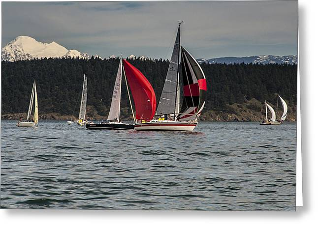 Sailboats And Mt Baker Greeting Card