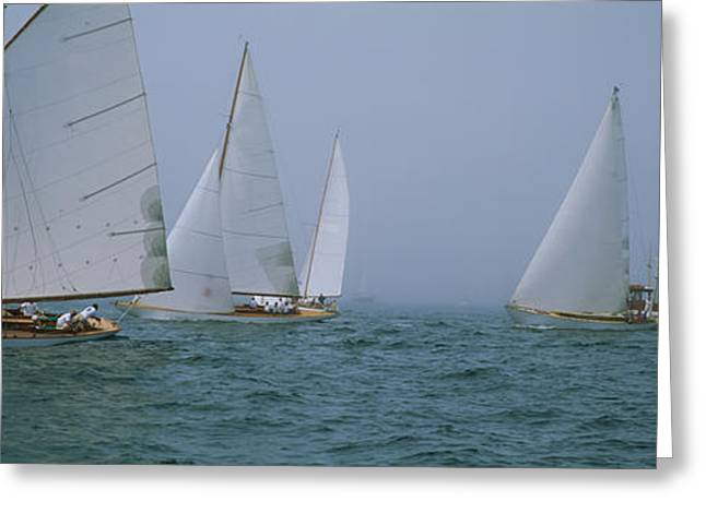 Sailboats At Regatta, Newport, Rhode Greeting Card by Panoramic Images