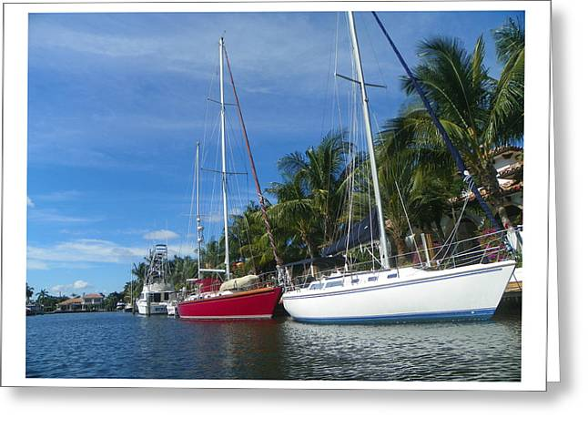 Sailboats  Greeting Card by Dianne  Lacourciere