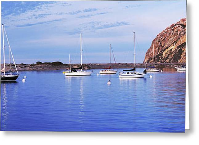 Sailboats In An Ocean, Morro Bay, San Greeting Card