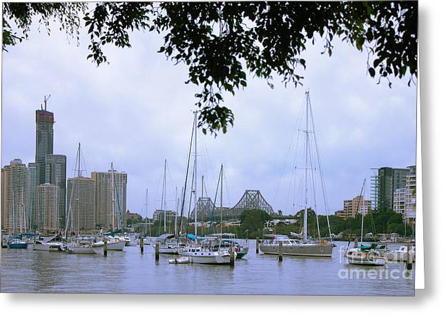 Greeting Card featuring the photograph Sailboats In Brisbane Australia by Jola Martysz