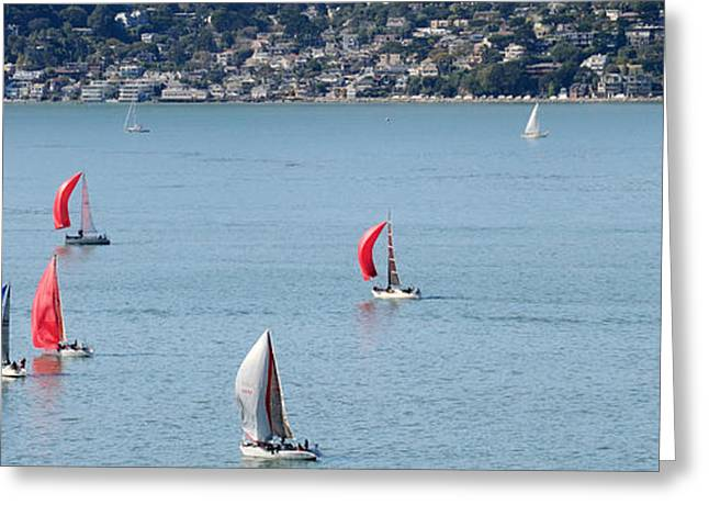 Sailboats On San Francisco Bay Greeting Card by Panoramic Images