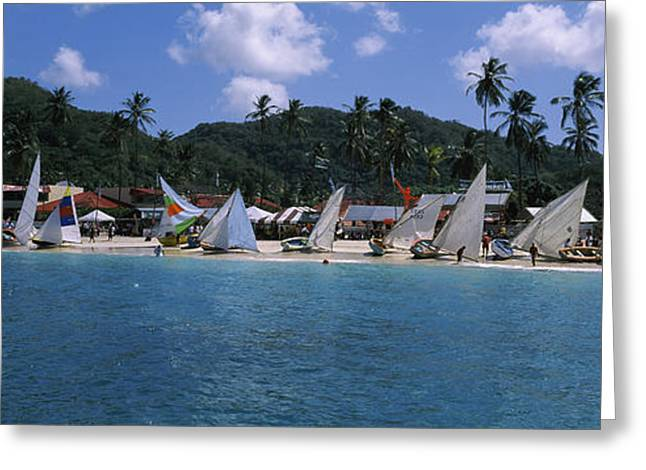 Sailboats On The Beach, Grenada Sailing Greeting Card by Panoramic Images