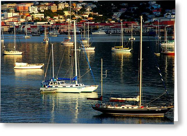 Sailboats Sunrise Greeting Card by Tim Nielsen