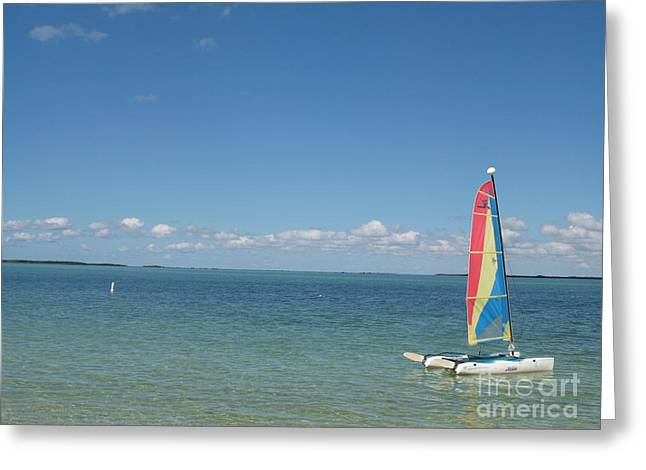 Sailing  At Key Largo Greeting Card by Christiane Schulze Art And Photography