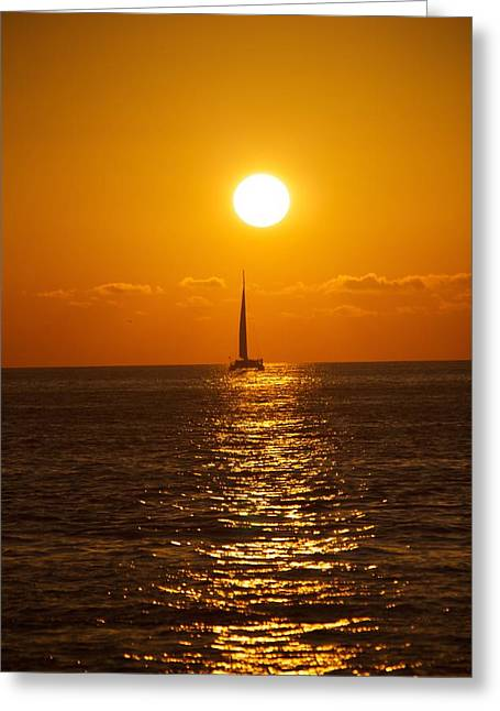 Sailing At Sunset Greeting Card