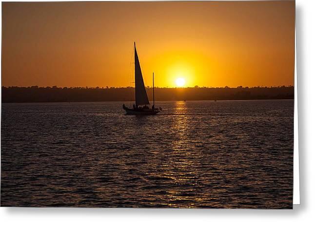 Sailing At Sunset Greeting Card by Margaret Buchanan