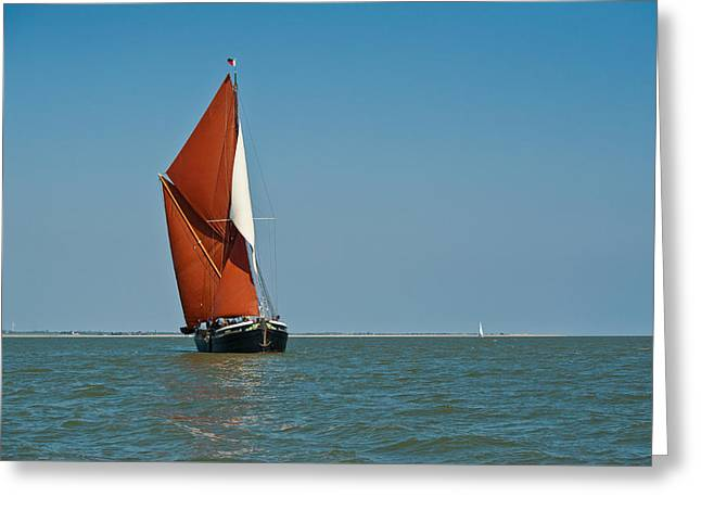 Sailing Barge Greeting Card by Gary Eason