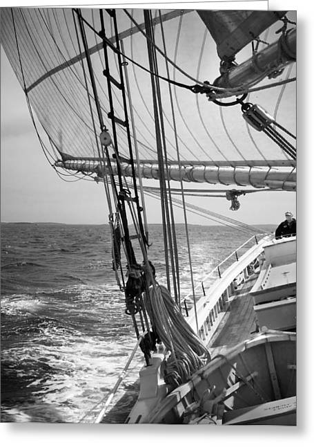 Sailing Before The Wind Greeting Card