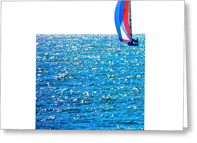 Sailing Greeting Card by Brian D Meredith