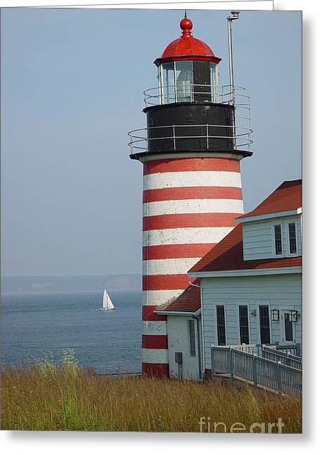 Sailing By West Quoddy Head Greeting Card