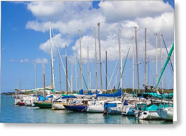 Greeting Card featuring the photograph Sailing Club Marina 1 by Leigh Anne Meeks