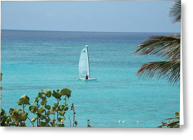 Greeting Card featuring the photograph Sailing by David S Reynolds