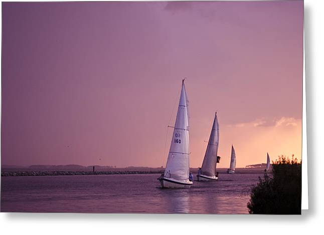 Sailing From The Sun Greeting Card