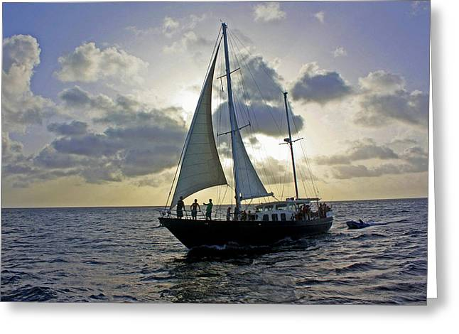 Sailing In Aruba Greeting Card