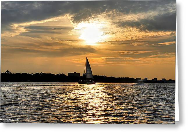Sailing Into The Sunset Greeting Card by Debra Forand